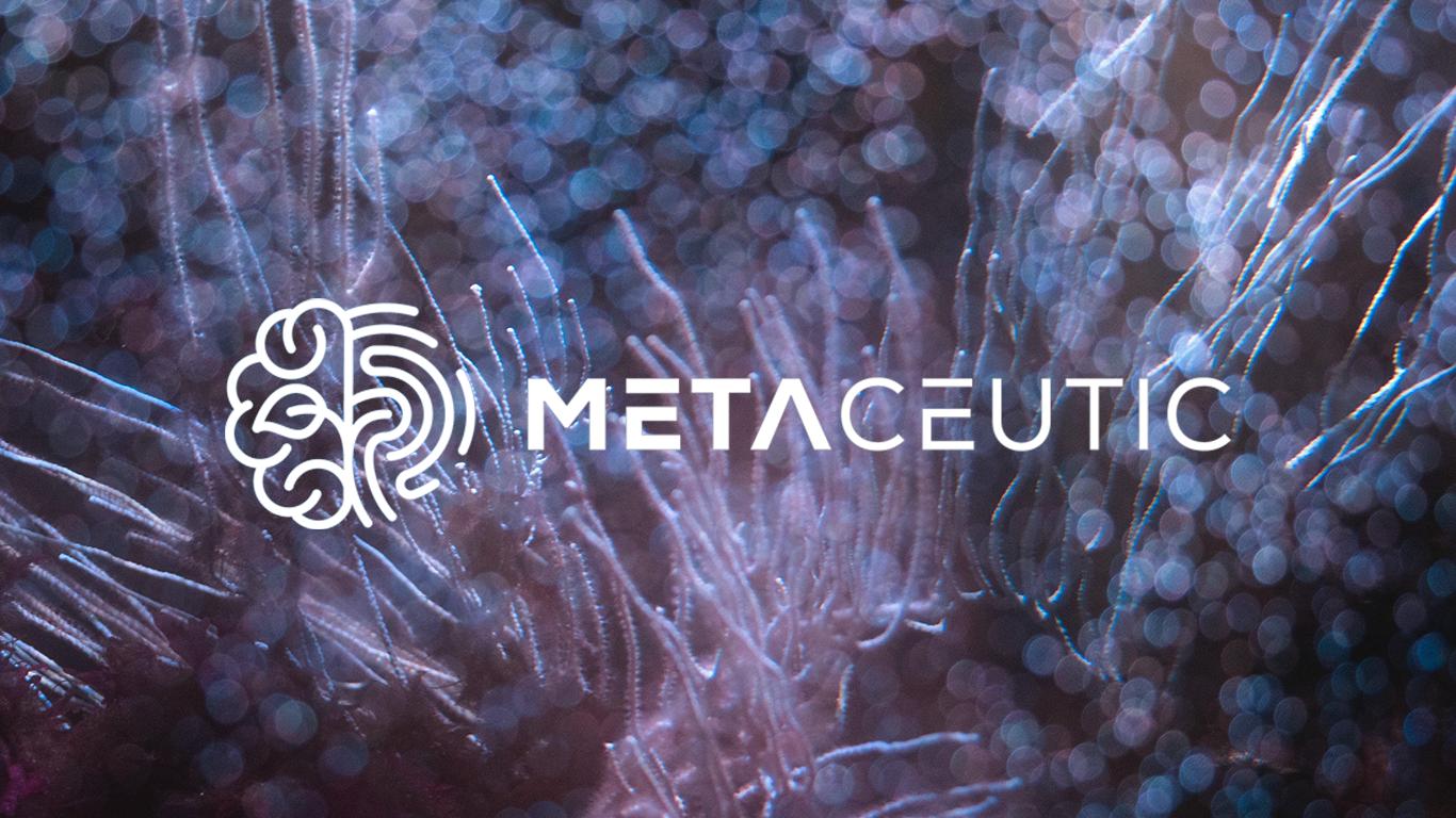 Metaceutic Koncept Case