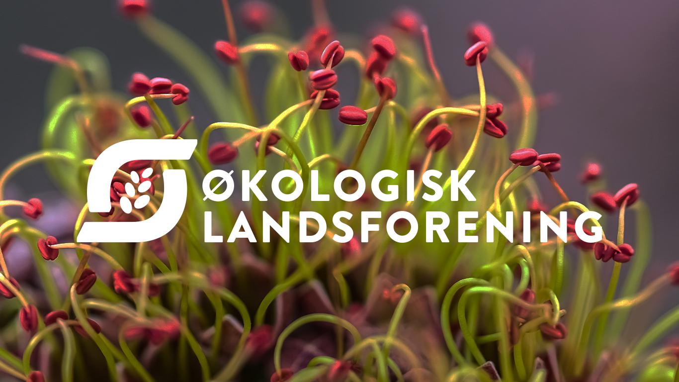 Økologisk Landsforening Strategi case